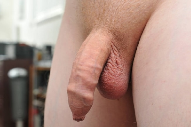 Soft Uncut Cock With Trimmed Pubic Hair - Nude Boys And Men